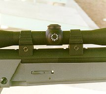 Leupold scope in Steyr mounts (9k jpg)
